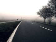 Ein 18-Jähriger fuhr auf einer dunklen Landstraße im Berliner Umland gegen einen Baum.