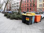 Die Weihnachtsbäume haben ausgedient. Foto: onnola