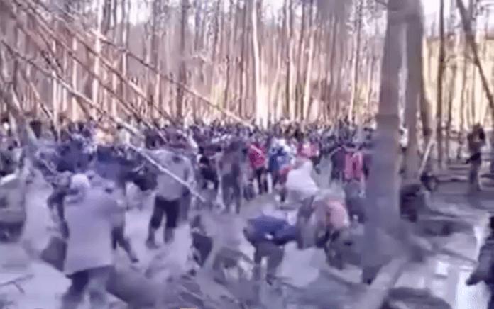 Bewaffnet mit Käschern fallen Bernstein-Plünderer zu Tausenden in die nordwestlichen Wälder der Ukraine ein (Foto: AutoMaidan)