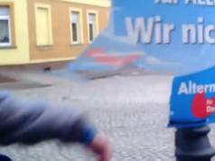 AfD internationale Wahlbeobachter OSZE Berlinwahl