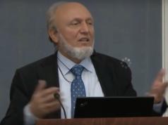 Münchener Professor Hans-Werner Sinn (68): Rentenalter rauf, Mindestlohn weg, um die Flüchtlinge zu ernähren (Foto: Youtube)