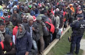 Polizei räumt Calais Migranten nach Deutschland