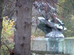 Leonorenpark Lankwitz Rodung