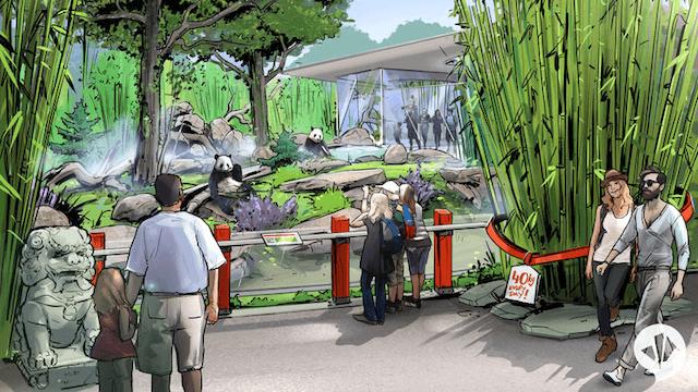 Vertrag unterzeichnet Zoo Berlin erhält zwei Große Pandas aus China