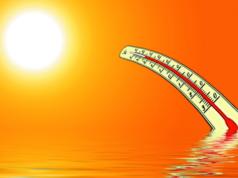Studie Penisse tragen maßgeblich zum Klimawandel bei