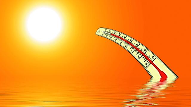 Laut einer aktuellen Studie tragen Penisse maßgeblich zum Klimawandel bei.