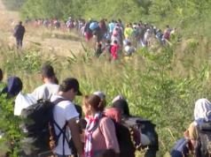 Laut Alexander Graf Lambsdorff zeigt das EuGH-Urteil einen Rechtsbruch der Bundesregierung in der Flüchtlingskrise. (Screenshot: YouTube)