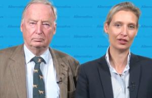 Die AfD zieht erstmals in den Bundestag ein. (Screenshot: YouTube)